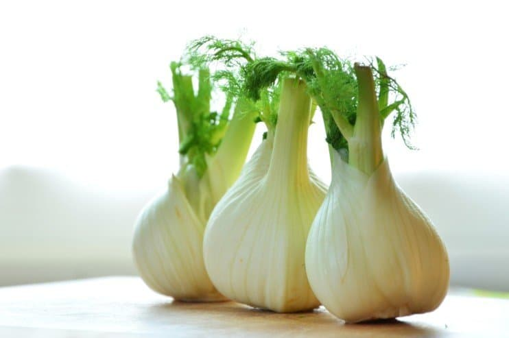 Info about Fennel